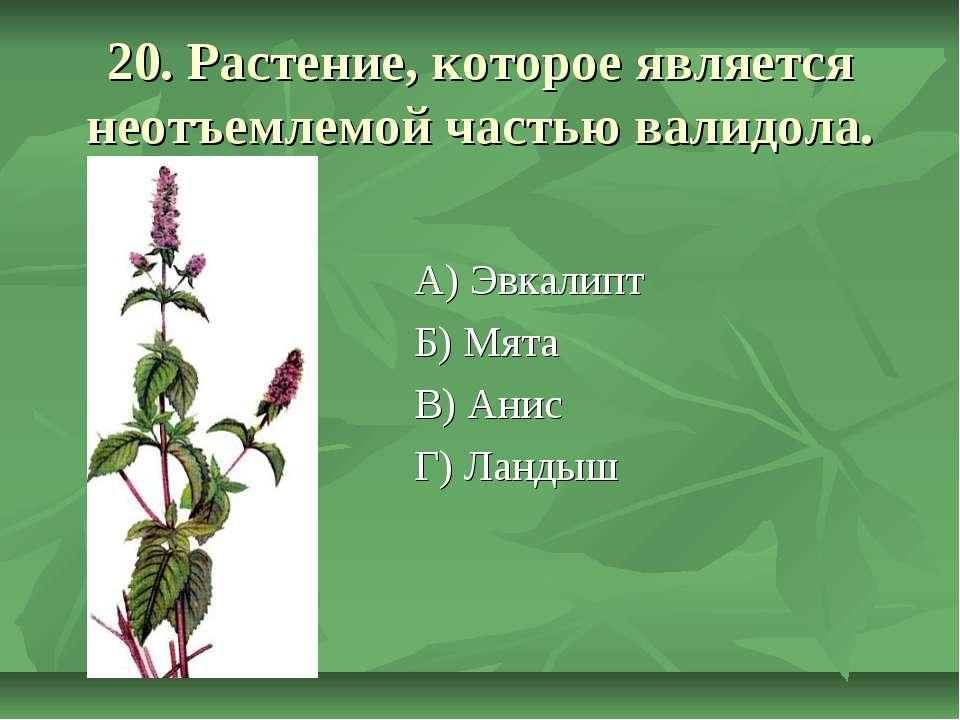 20. Растение, которое является неотъемлемой частью валидола. А) Эвкалипт Б) М...