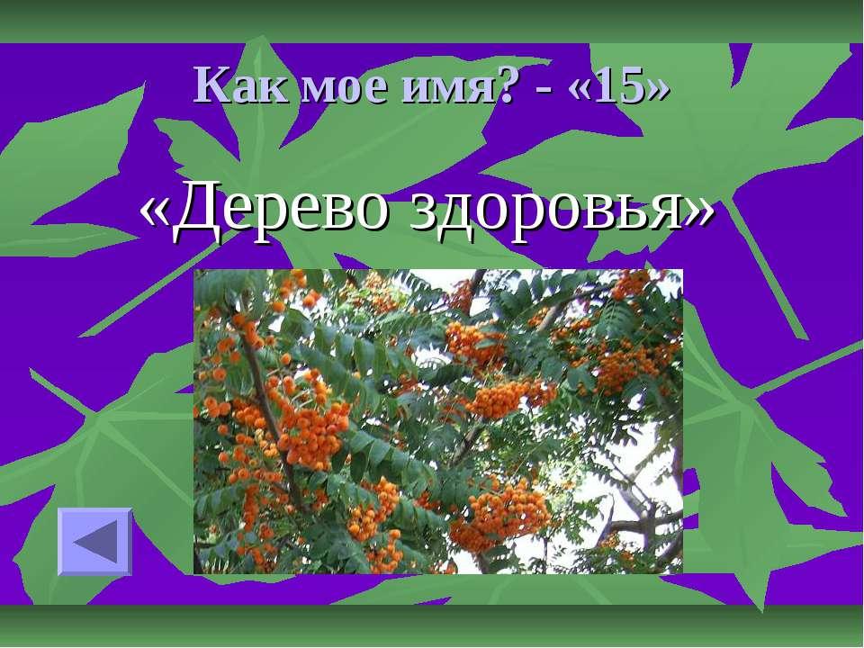 Как мое имя? - «15» «Дерево здоровья»