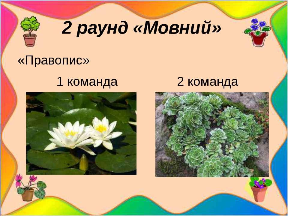 2 раунд «Мовний» «Правопис» 1 команда 2 команда Учасники кожної команди по ...