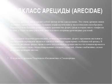 ПОДКЛАСС АРЕЦИДЫ (ARECIDAE) Подкласс арециды представляет собой третью ветвь ...