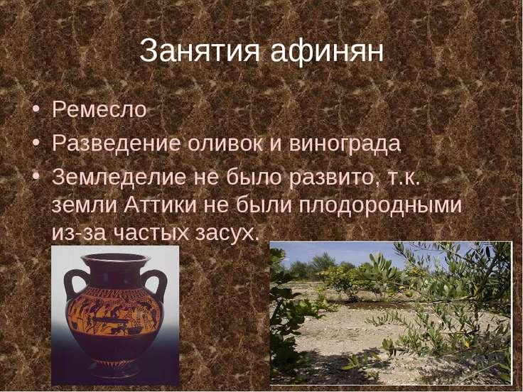 Занятия афинян Ремесло Разведение оливок и винограда Земледелие не было разви...
