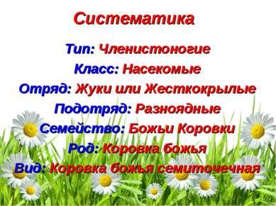 Систематика Тип: Членистоногие Класс: Насекомые Отряд: Жуки или Жесткокрылые ...