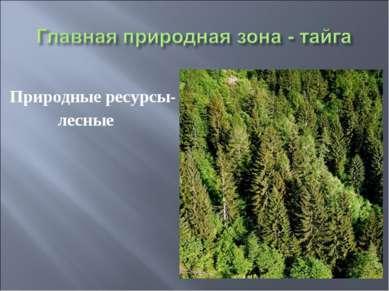 Природные ресурсы- лесные