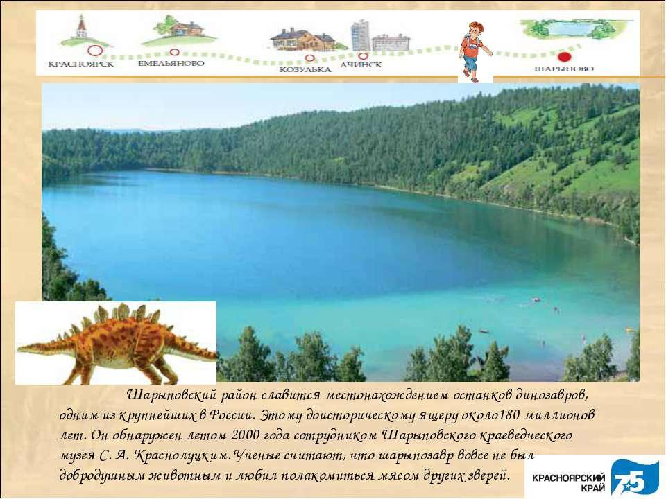 Шарыповский район славится местонахождением останков динозавров, одним из кру...