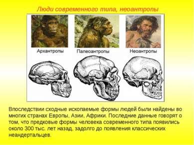 Люди современного типа, неоантропы Впоследствии сходные ископаемые формы люде...