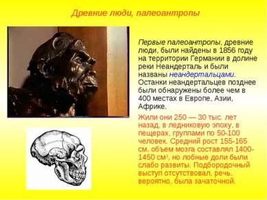 Первые палеоантропы, древние люди, были найдены в 1856 году на территории Гер...