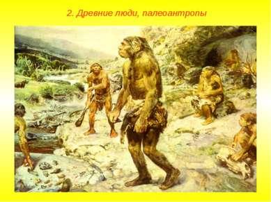 2. Древние люди, палеоантропы