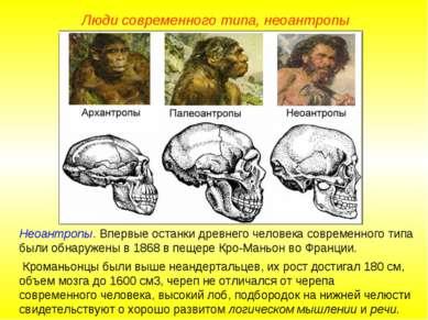 Люди современного типа, неоантропы Неоантропы. Впервые останки древнего челов...