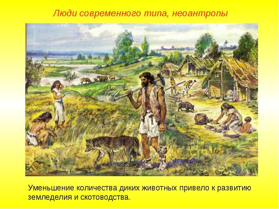 Люди современного типа, неоантропы Уменьшение количества диких животных приве...