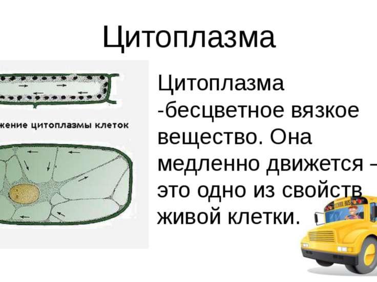Использованные источники http://images.yandex.ru/yandsearch?text=%D1%83%D0%B2...