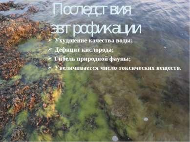 Последствия эвтрофикации Ухудшение качества воды; Дефицит кислорода; Гибель п...