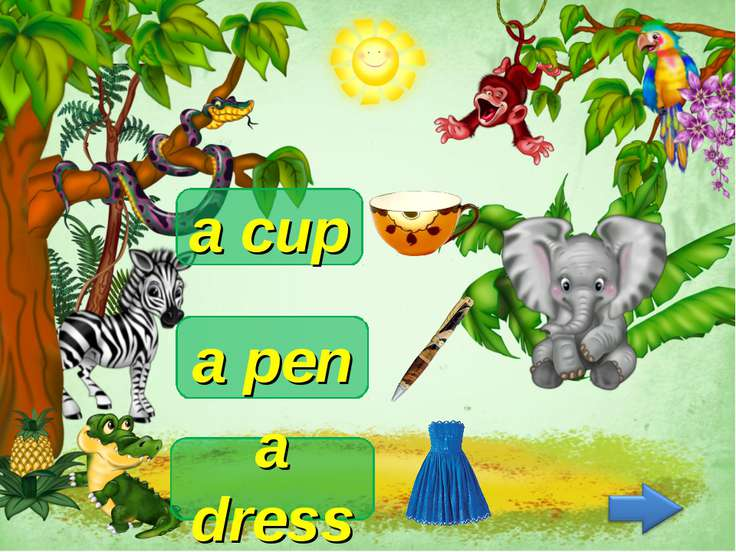 a dress a cup a pen