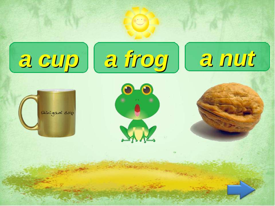 a nut a cup a frog