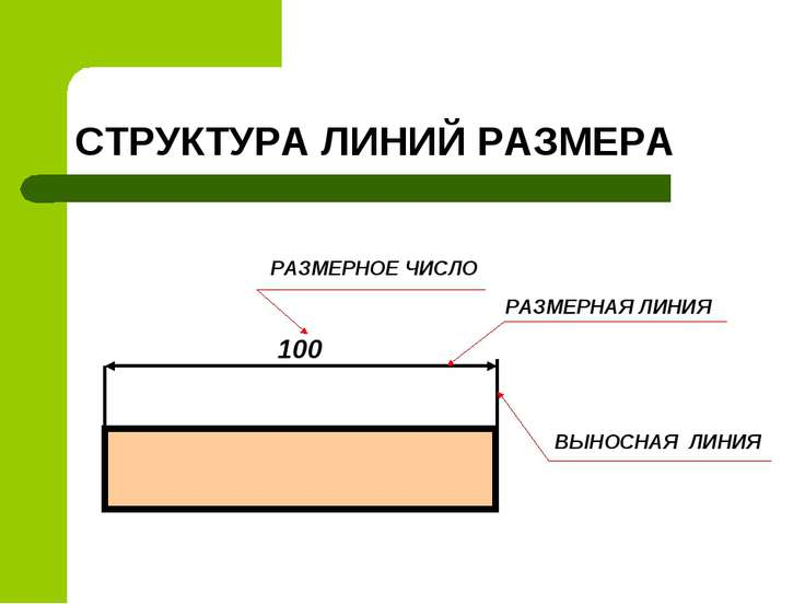 СТРУКТУРА ЛИНИЙ РАЗМЕРА 100 РАЗМЕРНОЕ ЧИСЛО РАЗМЕРНАЯ ЛИНИЯ ВЫНОСНАЯ ЛИНИЯ