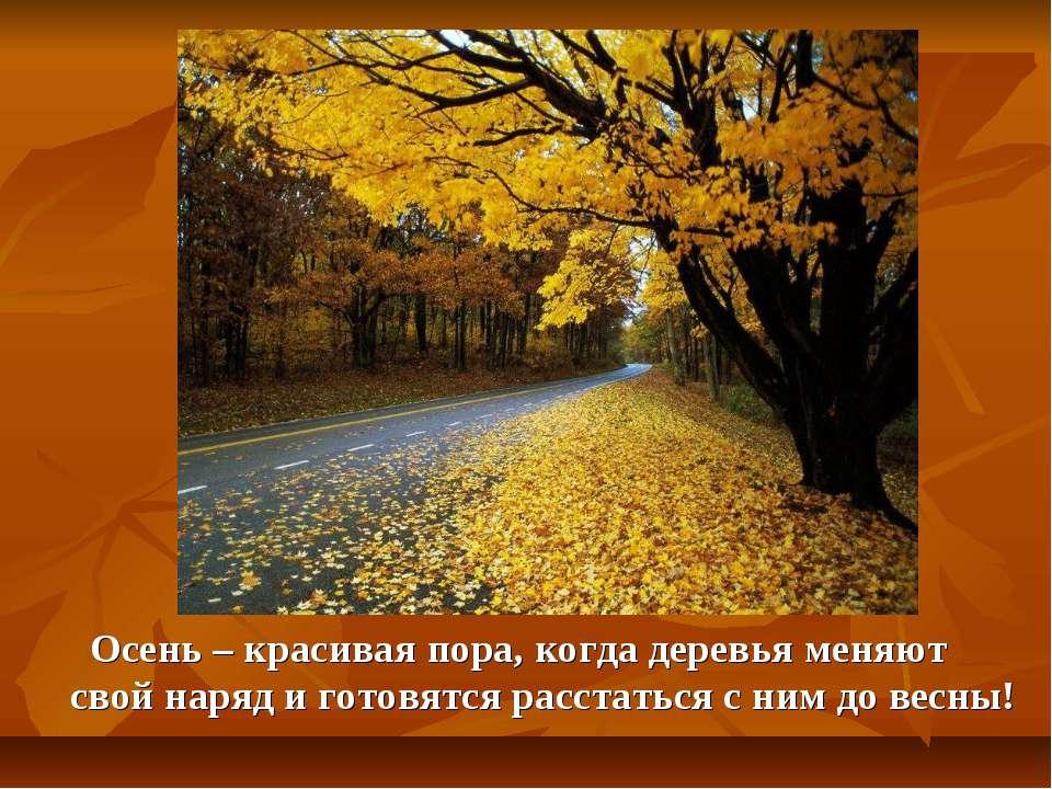 Осень – красивая пора, когда деревья меняют свой наряд и готовятся расстаться...