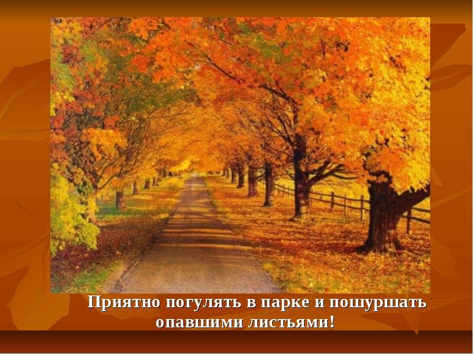 Приятно погулять в парке и пошуршать опавшими листьями!