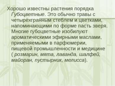 Хорошо известны растения порядка Губоцветные. Это обычно травы с четырёхгранн...
