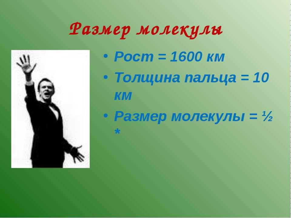 Размер молекулы Рост = 1600 км Толщина пальца = 10 км Размер молекулы = ½ *