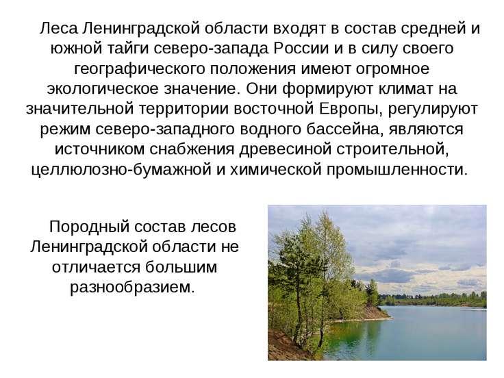 Леса Ленинградской области входят в состав средней и южной тайги северо-запад...
