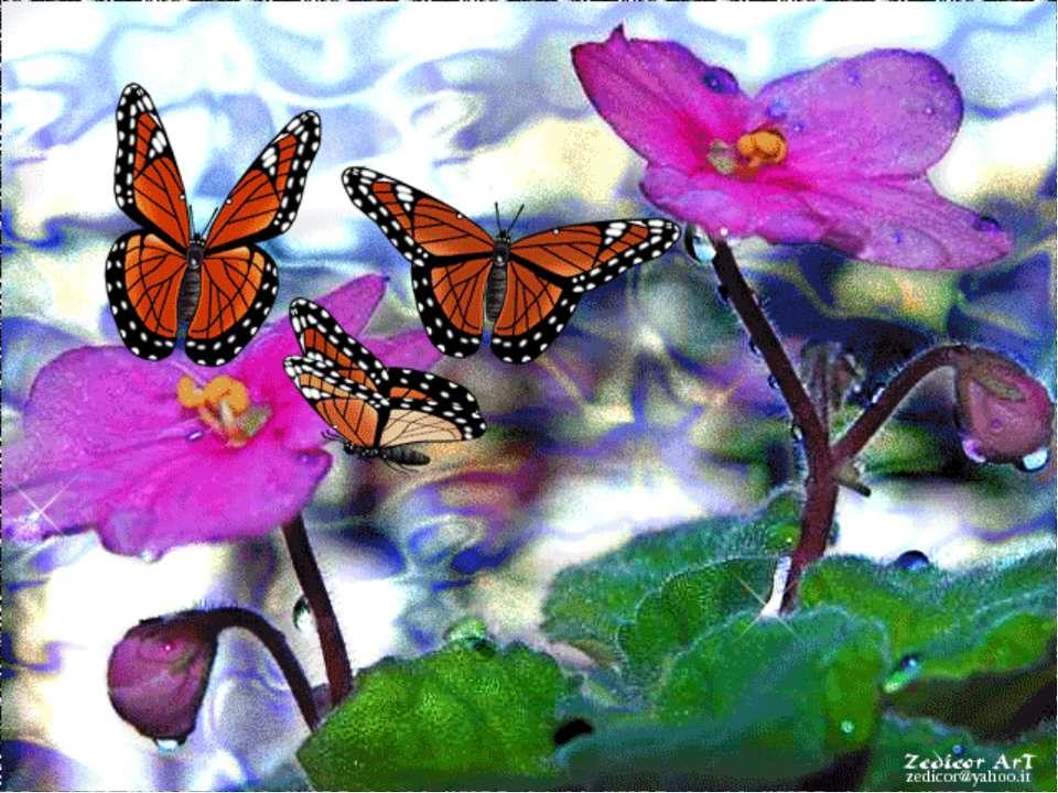 Анимационные открытки с бабочками, для любимой