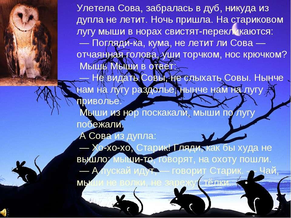 Улетела Сова, забралась в дуб, никуда из дупла не летит. Ночь пришла. На стар...