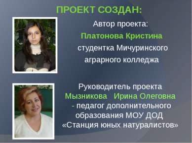 Руководитель проекта Мызникова Ирина Олеговна - педагог дополнительного образ...