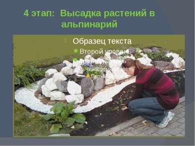 4 этап: Высадка растений в альпинарий