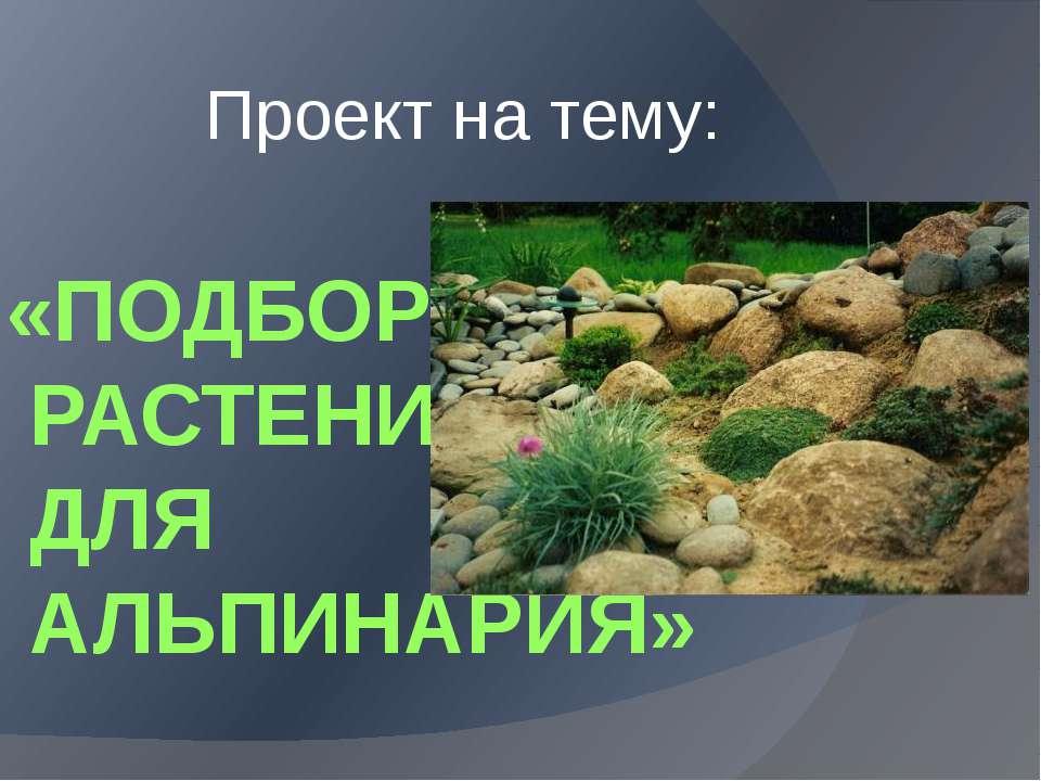 «ПОДБОР РАСТЕНИЙ ДЛЯ АЛЬПИНАРИЯ» Проект на тему: