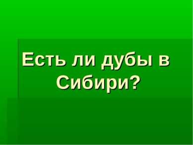 Есть ли дубы в Сибири?