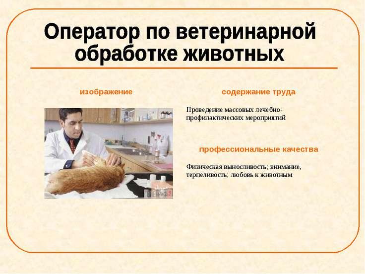 изображение содержание труда Проведение массовых лечебно-профилактических мер...