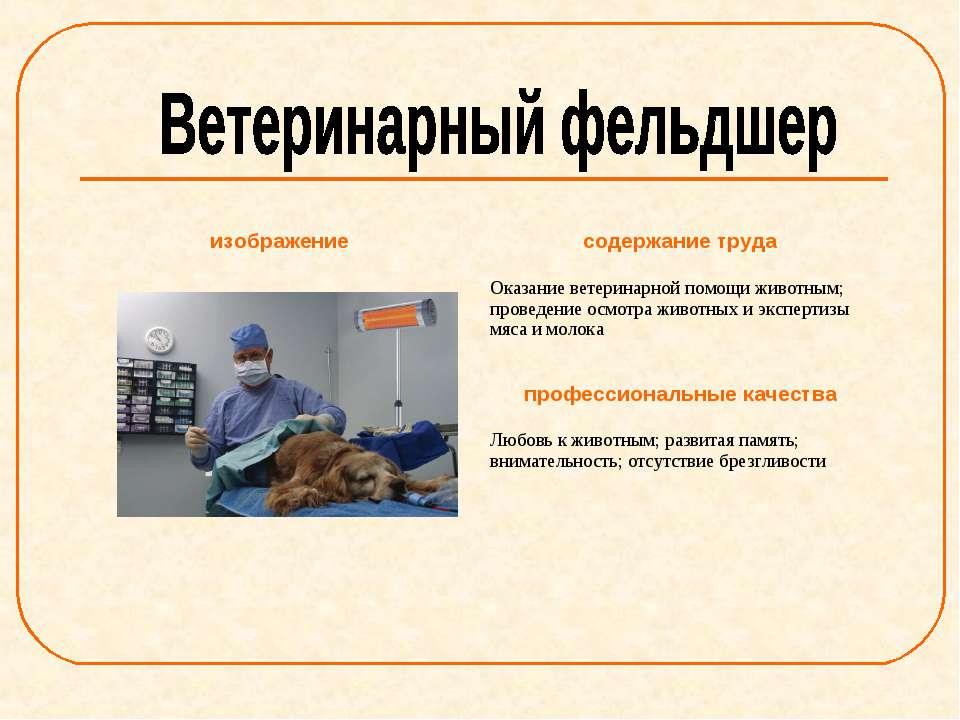 изображение содержание труда Оказание ветеринарной помощи животным; проведени...