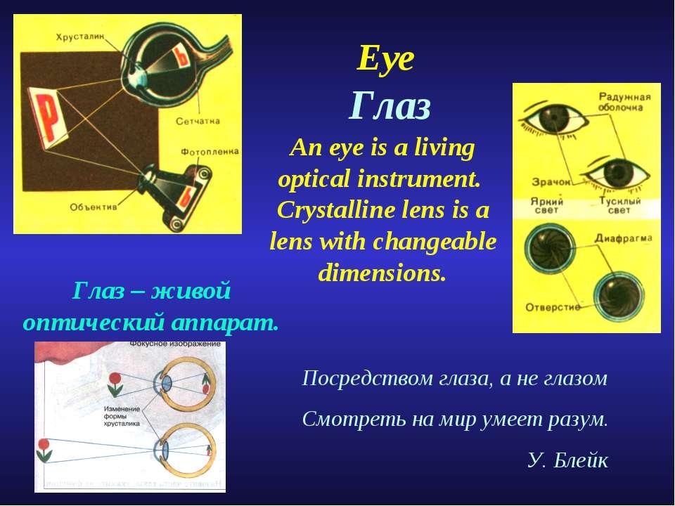 Eye Глаз Посредством глаза, а не глазом Смотреть на мир умеет разум. У. Блейк...