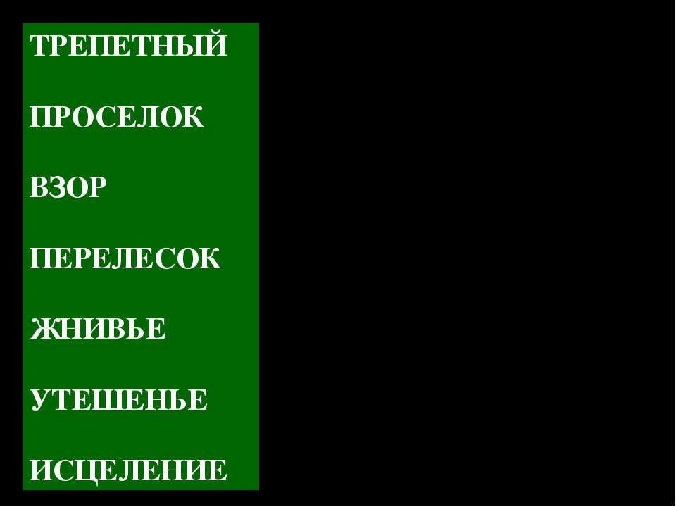 ТРЕПЕТНЫЙ ПРОСЕЛОК ВЗОР ПЕРЕЛЕСОК ЖНИВЬЕ УТЕШЕНЬЕ ИСЦЕЛЕНИЕ - грунтовая дорог...