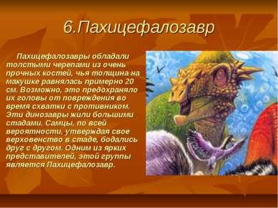 6.Пахицефалозавр Пахицефалозавры обладали толстыми черепами из очень про...