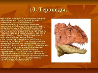 10. Тероподы. Тероподы, хищные динозавры подотряд ящеротазовых динозавро...