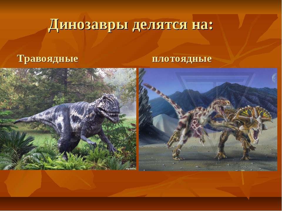 Динозавры делятся на: Травоядные плотоядные