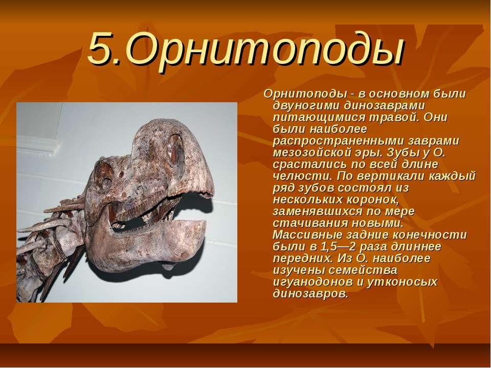 5.Орнитоподы Орнитоподы - в основном были двуногими динозаврами питающим...