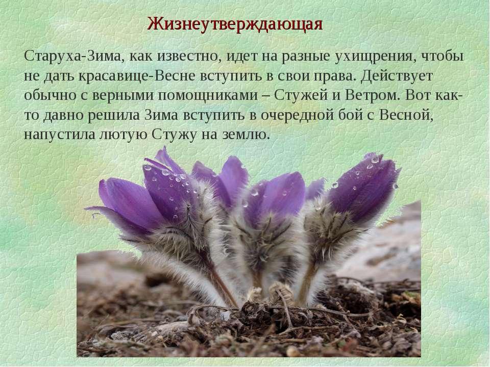 Жизнеутверждающая Старуха-Зима, как известно, идет на разные ухищрения, чтобы...