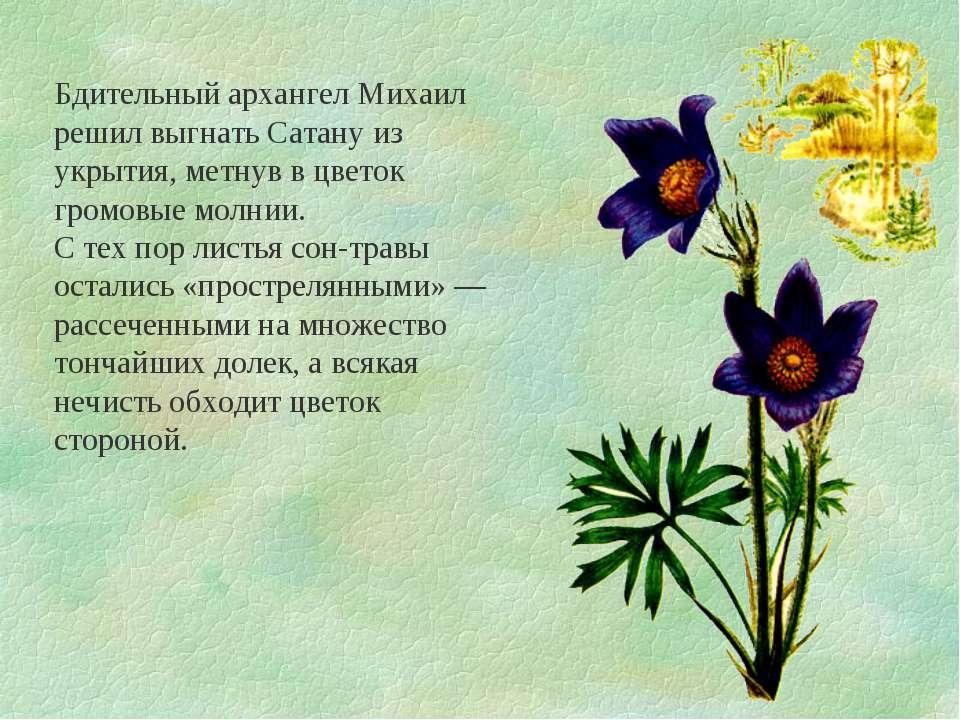 Бдительный архангел Михаил решил выгнать Сатану из укрытия, метнув в цветок г...
