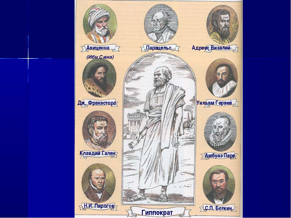 Авиценна (Ибн Сина) Парацельс Гиппократ Дж. Фракасторо Адреас Визалий Уильям ...