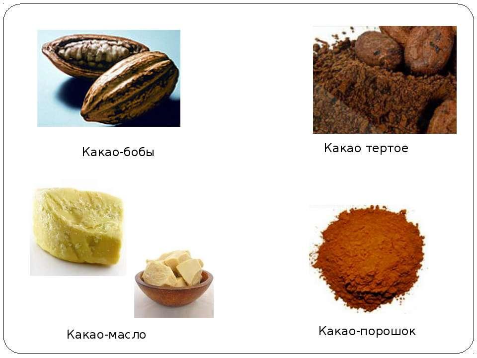 Какао-бобы Какао тертое Какао-масло Какао-порошок