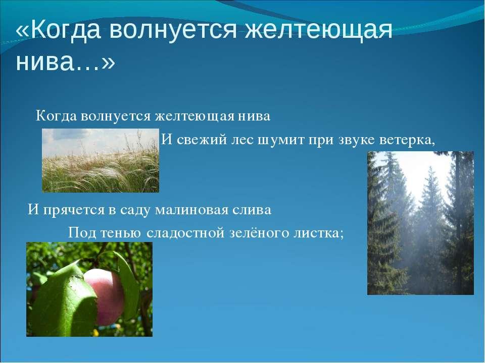 «Когда волнуется желтеющая нива…» Когда волнуется желтеющая нива И свежий лес...