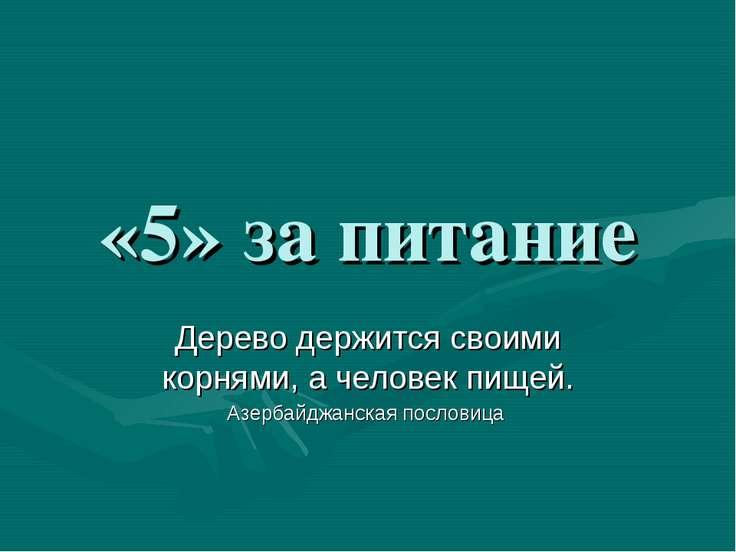 «5» за питание Дерево держится своими корнями, а человек пищей. Азербайджанск...