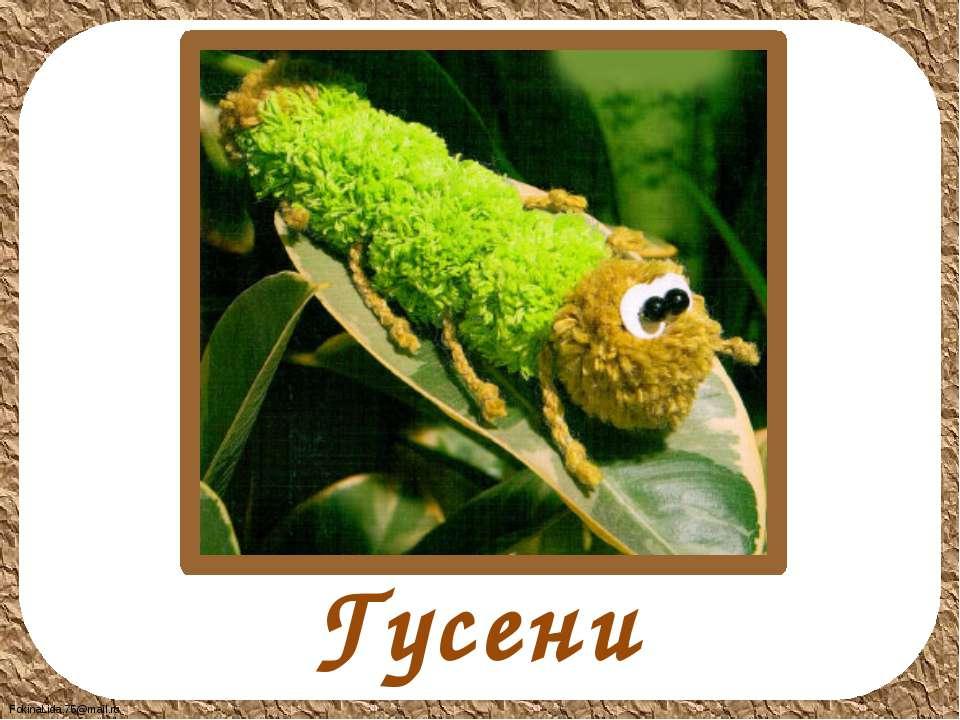 Гусеница FokinaLida.75@mail.ru