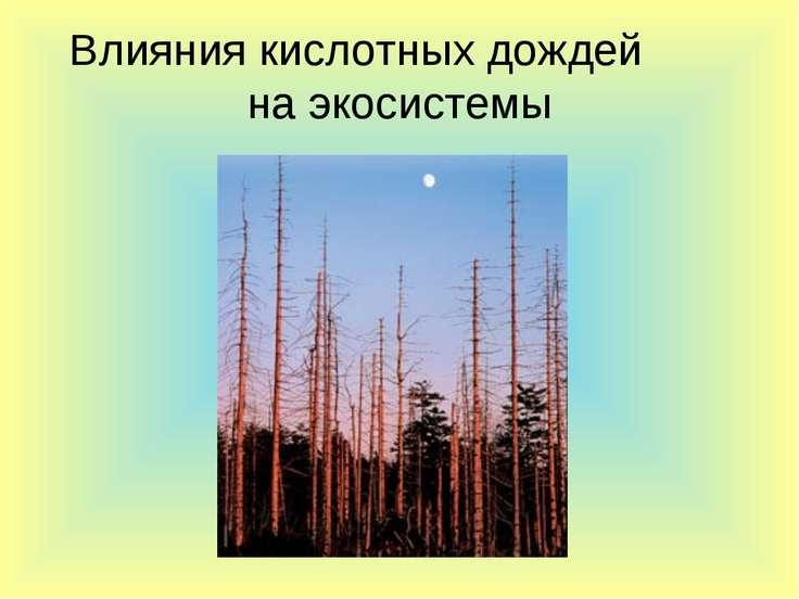 Влияния кислотных дождей на экосистемы