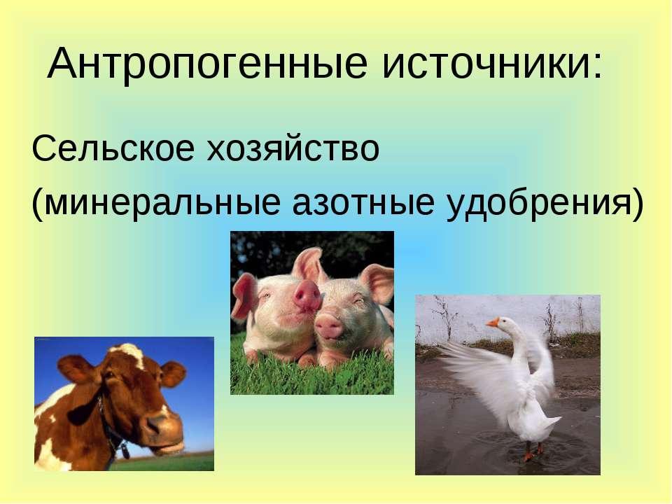 Сельское хозяйство (минеральные азотные удобрения) Антропогенные источники: