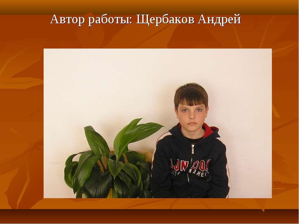 Автор работы: Щербаков Андрей