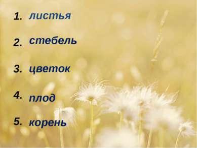 1. 2. 3. 4. 5. листья стебель цветок плод корень