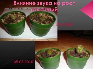 05.10.2009 05.03.2010