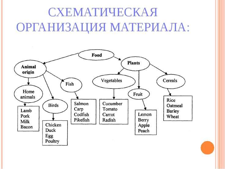 СХЕМАТИЧЕСКАЯ ОРГАНИЗАЦИЯ МАТЕРИАЛА: